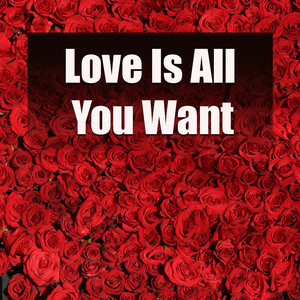 Love Is All You Want