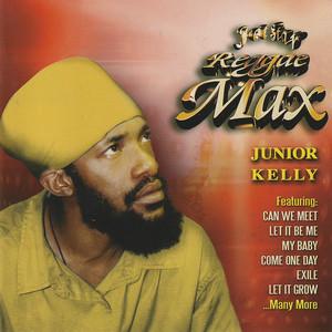 Reggae Max album