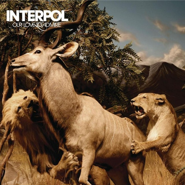 Album cover for Our Love To Admire by Interpol
