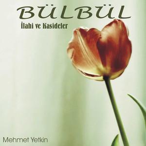 Mehmet Yetkin