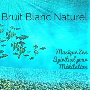 Bruit Blanc Naturel: Musique Zen Spirituel pour Méditation, Yoga de Guérison et Massage Profond Spa Albumcover