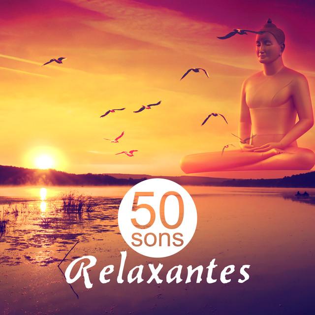 50 Sons Relaxantes: Cura Sons de Meditação e Yoga, Paz Interior e Serenidade, Musicoterapia para Problemas de Sono