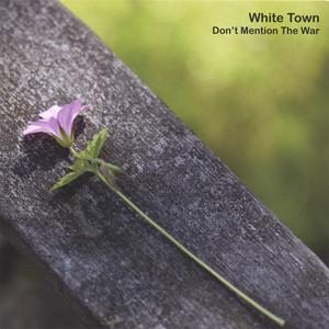 Don't Mention The War album