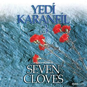 Yedi Karanfil, Vol. 3 (Seven Cloves Enstrumantal) Albümü