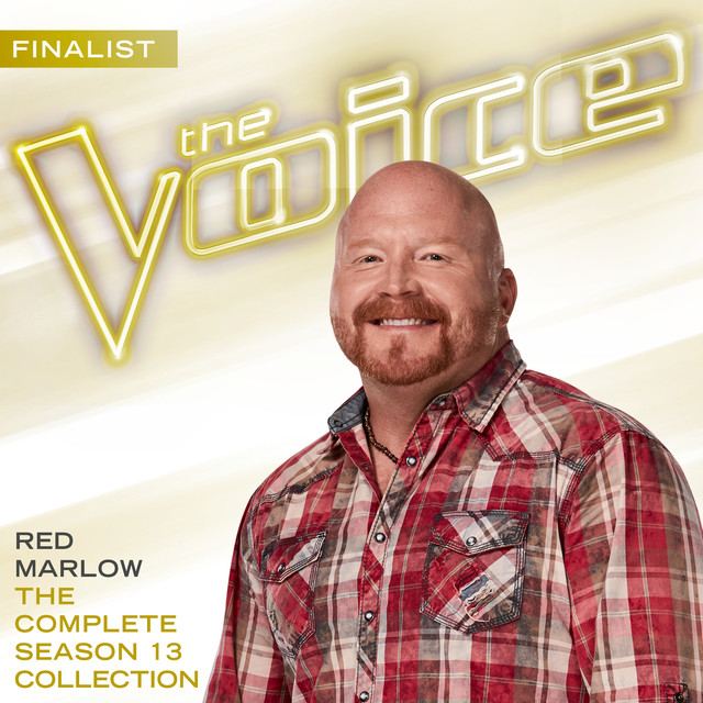 The Complete Season 13 Collection (The Voice Performance)