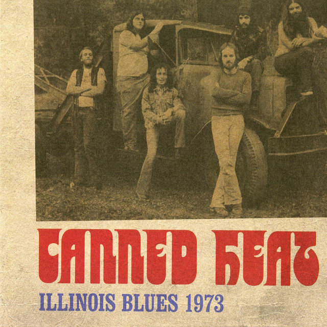 Illinois Blues 1973 (Live)
