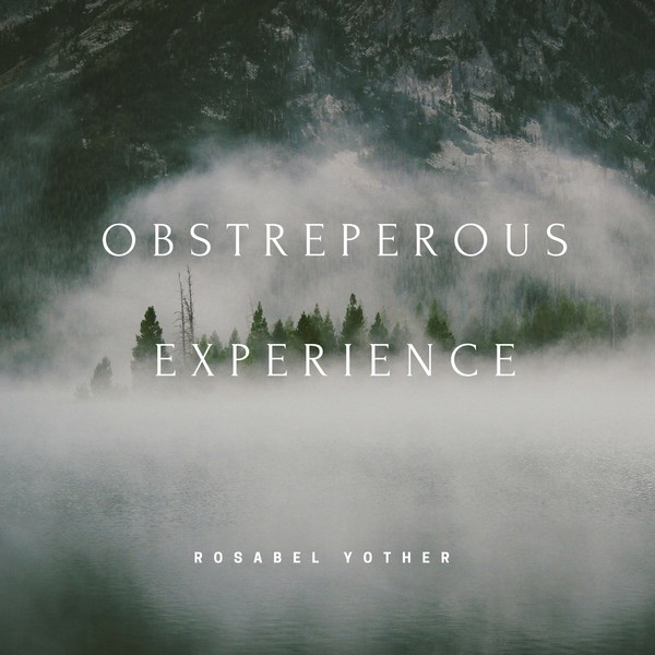 Obstreperous Experience