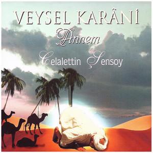 Veysel Karani (Annem) Albümü