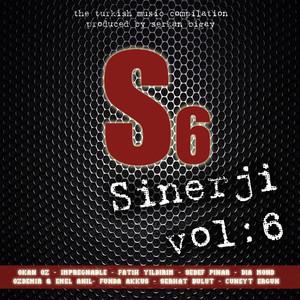 Sinerji, Vol.6 Albümü