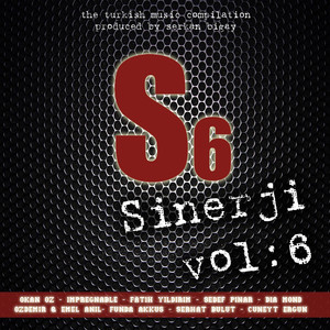 Sinerji, Vol.6