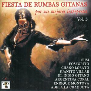 Fiesta de Rumbas Gitanas Vol. 3 Albumcover