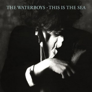 Waterboys, The Whole Of The Moon - 2004 Remastered Version på Spotify
