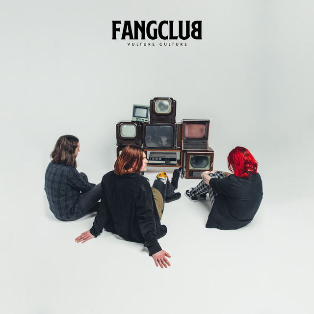 Album cover for Vulture Culture by Fangclub