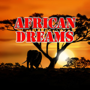 African Dreams Albumcover