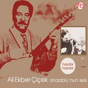 Anadolu'nun Sesi (Haydar Haydar) Albümü