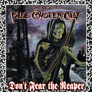 Blue Öyster Cult I Am the One You Warned Me Of cover