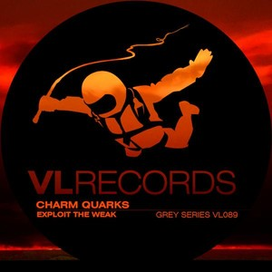 Charm Quarks