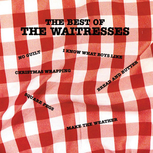 The Best of The Waitresses album