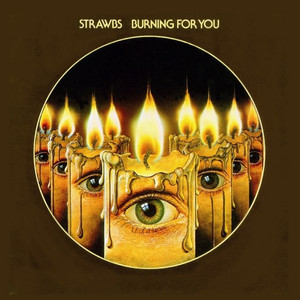 Burning for You album