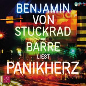 Panikherz (ungekürzt) Audiobook