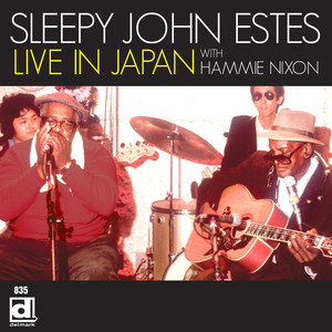 Sleepy John Estes, Hammie Nixon The Girl I Love, She Got Long Curly Hair cover
