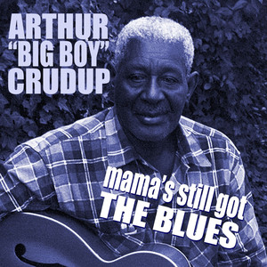 Mama's Still Got The Blues album