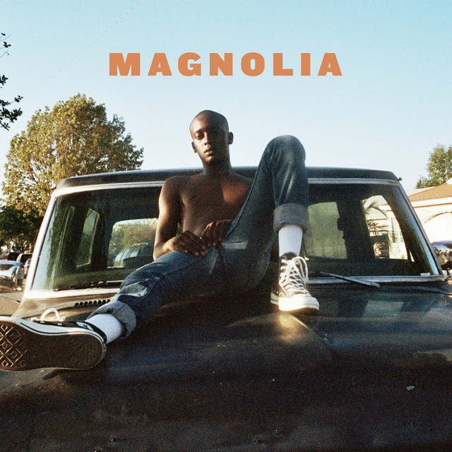 Album cover for Magnolia by Buddy