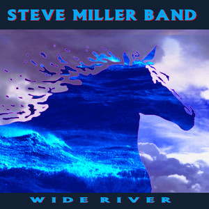 Wide River album