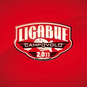 Campovolo 2.011 - Ligabue