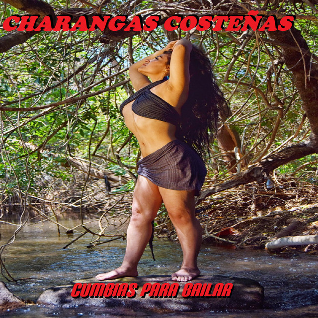 Album cover for Charangas Costeñas by Cumbias Para Bailar