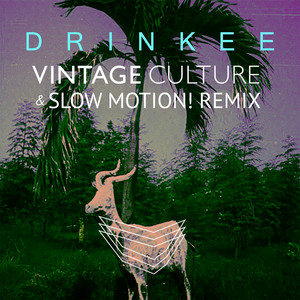 Drinkee (Vintage Culture & Slow Motion! Remix) Albümü