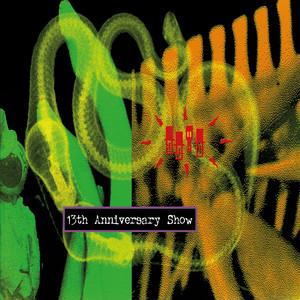 13th Anniversary Show - Live in the USA album
