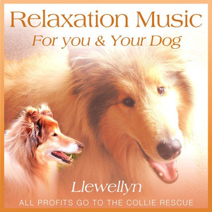 Relaxation Music for You and Your Dog Albumcover