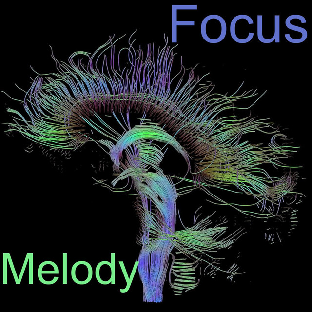Album cover for Focus Melodies by Study Power