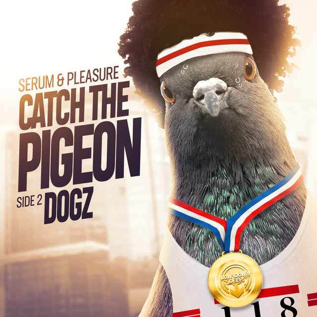 Catch The Pigeon / Dogz