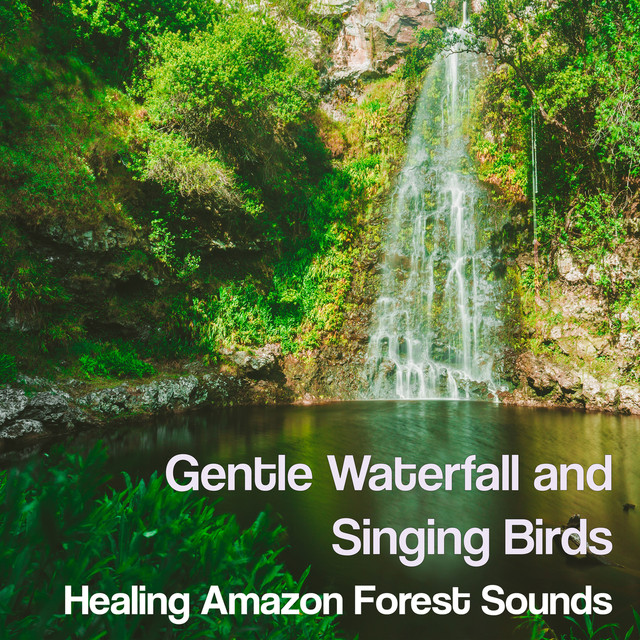 Gentle Waterfall and Singing Birds: Healing Amazon Forest