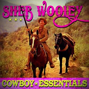 Cowboy Essentials album