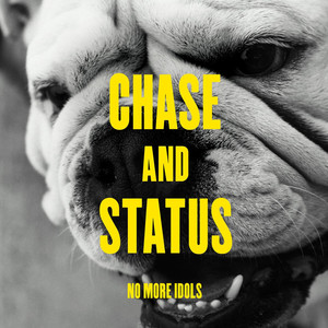 Chase & Status, Plan B, Rage Fool Yourself cover