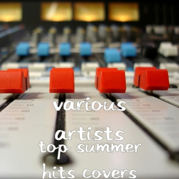 Album cover for Top Summer Hit Covers by Various Artists