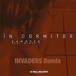In Dormitor (Invaders Remix) Albümü