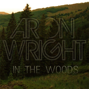 In the Woods - Aron Wright