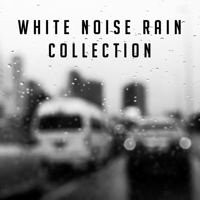 White Noise Rain Collection
