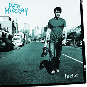 Feeler - Pete Murray