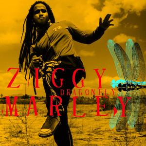 Dragonfly - Ziggy Marley