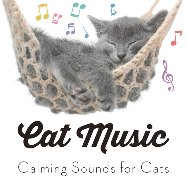Cat Music - Calming Sounds for Cats
