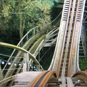 Love Rollercoaster