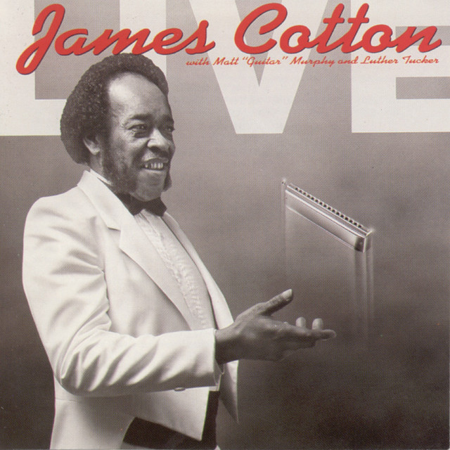 James Cotton Live at Antone's Nightclub