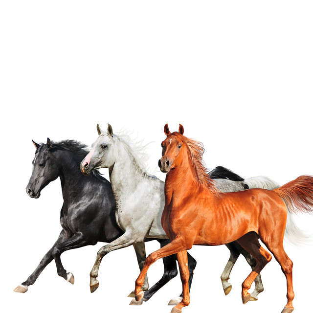 Old Town Road (Diplo Remix)