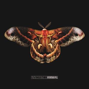 Animal album