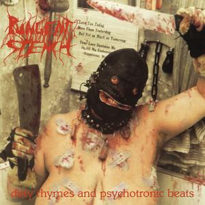 Dirty Rhymes & Psychotronic Beats album